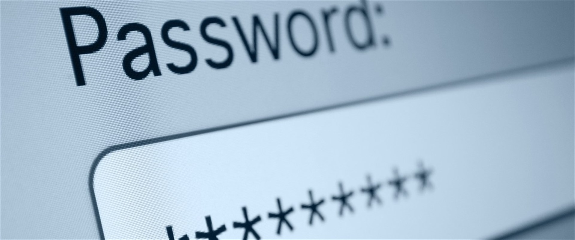 Rubate due milioni di password -  (363)